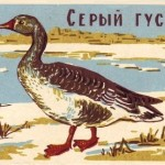 USSR matchbox labels