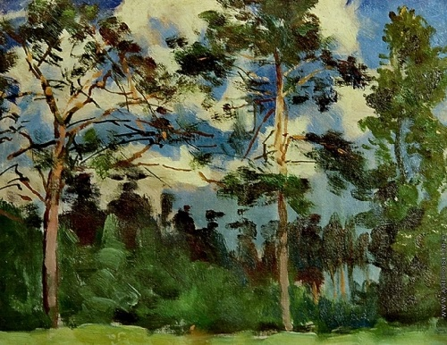 Pine trees. 1964