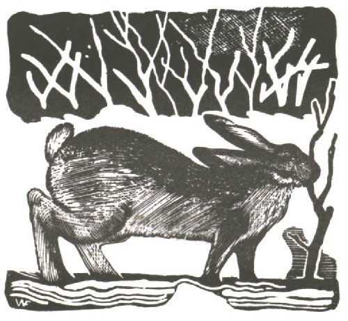 V. Favorsky. Hare. For the story of Leo Tolstoy 'Rusak'. Wood engraving. 1929 - 1931