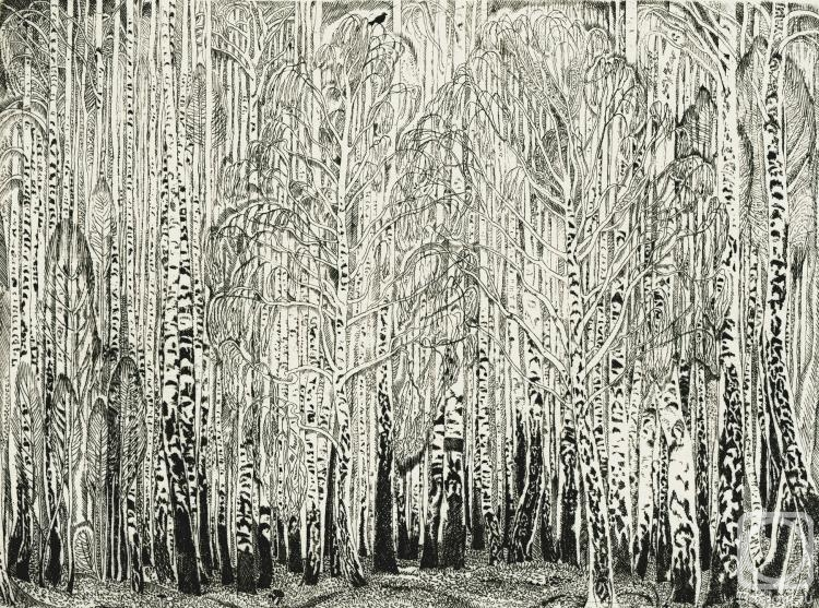 Birchwood. Paper-etching. 1972