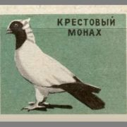 Cross monk. Pigeons species, 1963, green paper