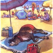 Summer holiday is necessary for everybody, including dogs