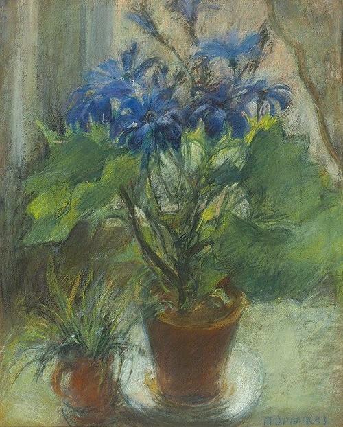 Blue flowers. 1950s