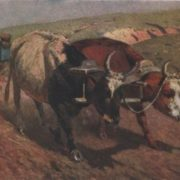 The oxen in the plow. 1920 In 1911, for this work, the Academy of Arts awarded Grekov the title of academician