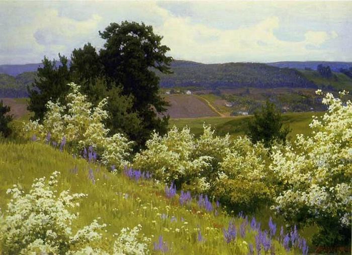 Hawthorn blooms. 1969