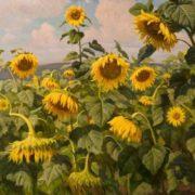 Sunflowers growing. Cardboard, oil. 1970. Toliyatti art museum