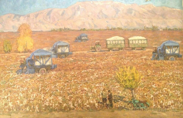 Cotton harvesting. 1970s