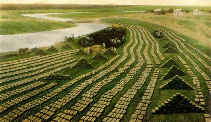 A.N. Tolkachev. First settlement. From the series of Virgin Lands. 1979. A.N. Tolkachev