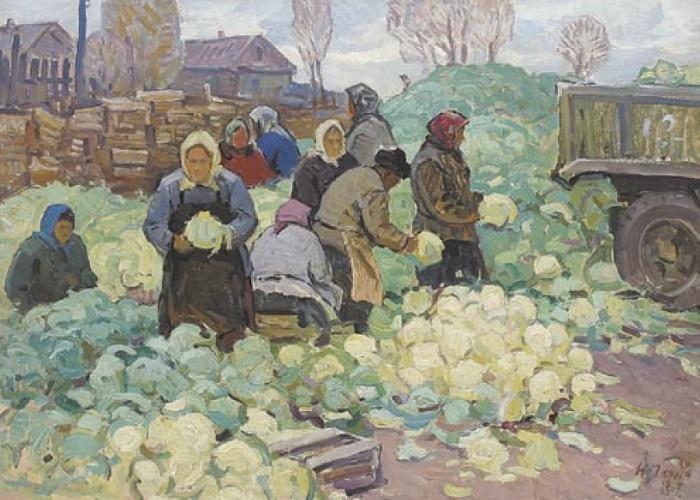 I.V. Panich. Cauliflower harvest. 1987