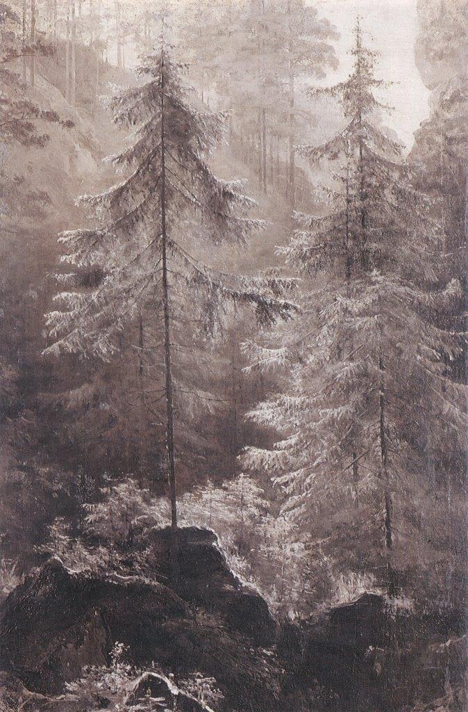 Mountain Gorge. 1900. Oil, canvas
