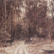 Road in the forest. 1897. Oil, canvas