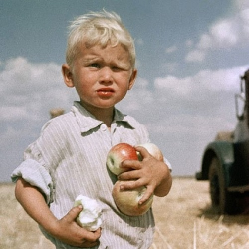 A boy with apples. 1961. The Virgin Lands Campaign during 1960s