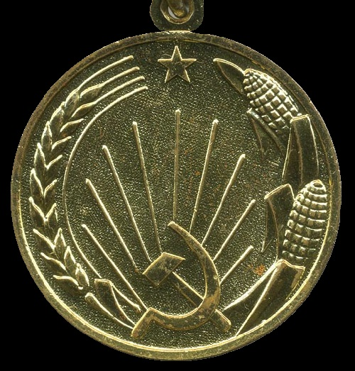Medal for the developments of Virgin Lands (back side)
