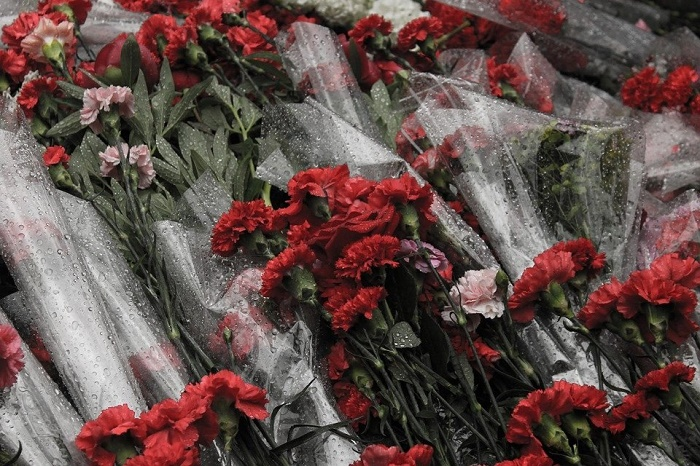 In the memory of revolution, red carnation flowers. 2017