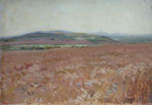 Grain field. 1958