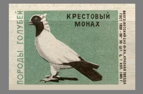 Cross monk. Pigeons species, 1963, green paper