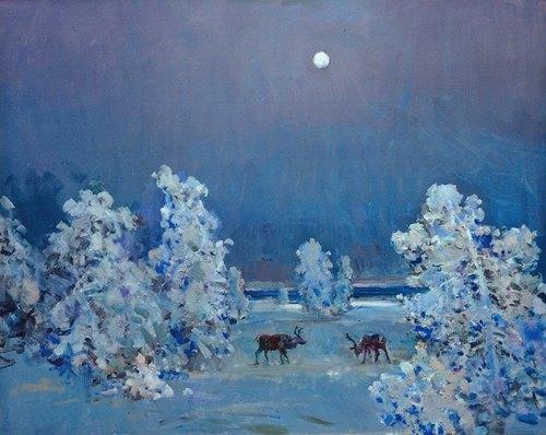 Twilight in tundra