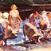 Women pig farmers