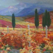 Autumnal vineyards. 1978