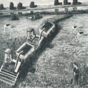 Machines harvest the fields. 1975. S.B. Krivitskas