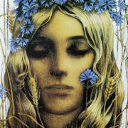 Cornflowers. Summer. 1974