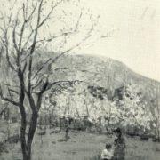 Landscape in Hamsan. 1956