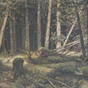 Genrikh Viktorovich Nechiporenko. Pine wood. 1960s