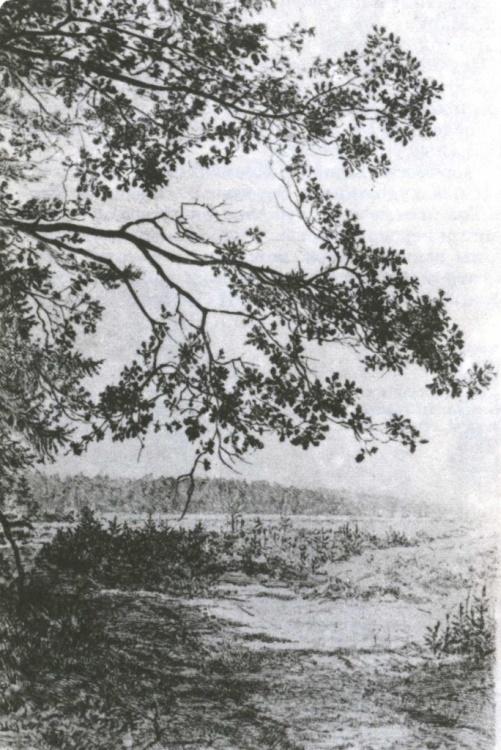 M. Aleksich. Landscape. Etching. 1960