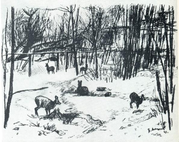 Zoo. Autolithography. 1941