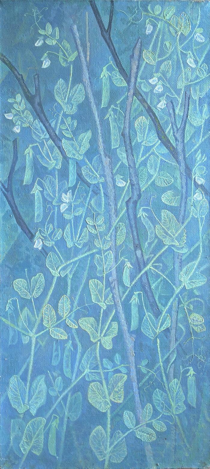 Pea. 1991. Oil, canvas