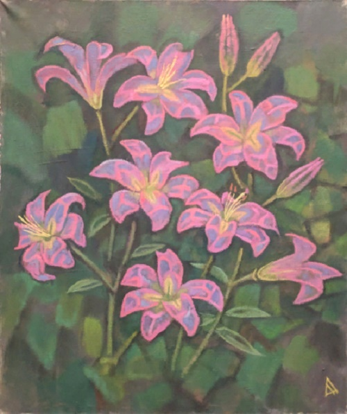 Pink lilies. 2017