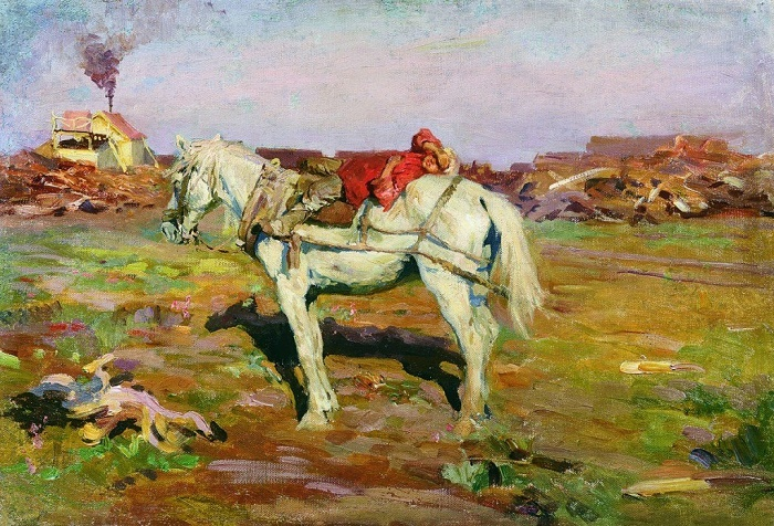 On the peat bog. Rest (Boy in a pink shirt on a white horse)