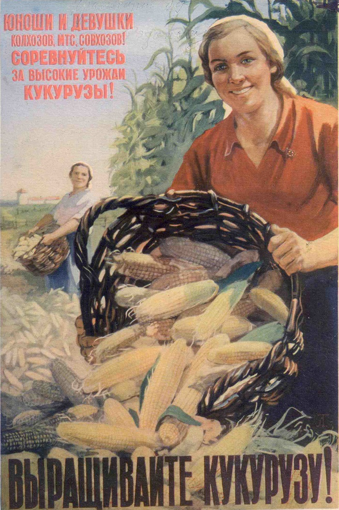 V. Tishkin. Poster encouraging to grow corn. 1954
